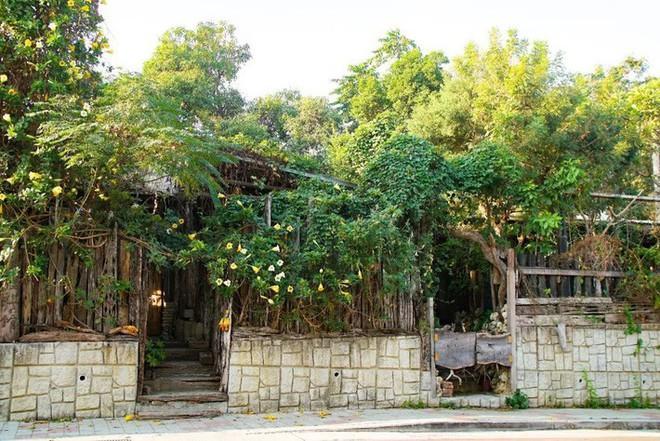 Ngôi nhà tồn tại bền vững với thiên nhiên sau 30 năm bất chấp thiên tai nhờ những bí quyết tuyệt vời của gia chủ - Ảnh 2.