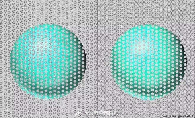 Bức hình gây lú nhất MXH hôm nay: Rõ ràng là một lam một xanh ngọc, thế mà hóa ra lại cùng một màu? - Ảnh 2.
