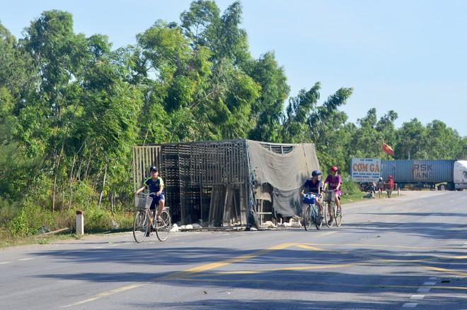 Xe chở 1.800 con vịt gặp tai nạn, người dân thi nhau hôi của, công an phải đi vận động trả lại cho chủ xe - Ảnh 1.