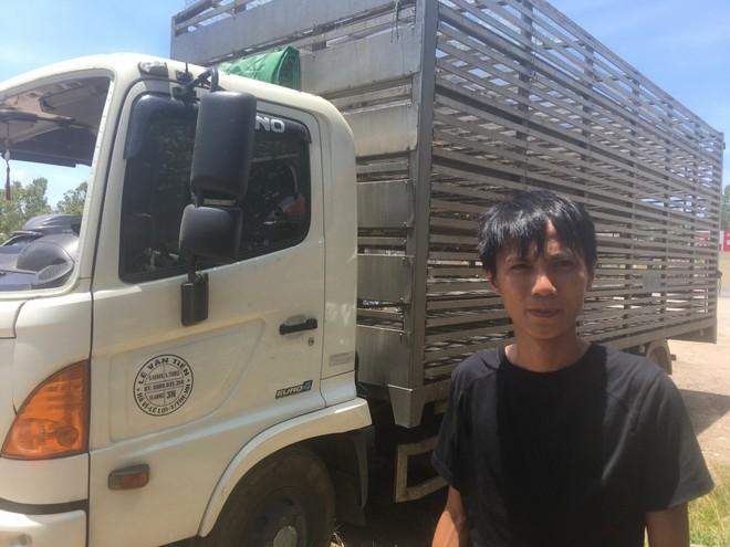 Dân xúm lại hôi vịt trên xe tải bị lật ở Quảng Bình: Công an vào cuộc điều tra - Ảnh 1.