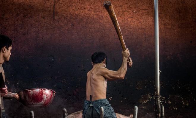 Sự thật tàn khốc đằng sau những lò giết mổ lợn ở Thái Lan với nỗi đau thấu tim can không ai biết - Ảnh 3.