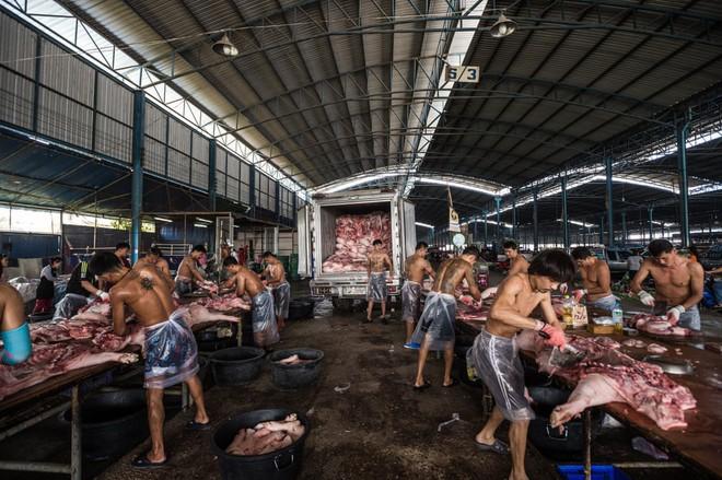 Sự thật tàn khốc đằng sau những lò giết mổ lợn ở Thái Lan với nỗi đau thấu tim can không ai biết - Ảnh 6.