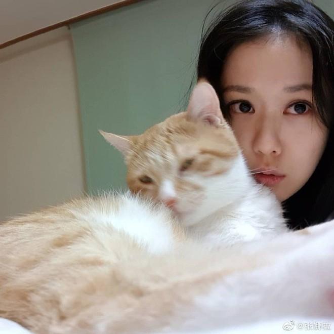 Ở tuổi U40, Jang Nara vẫn gây sốt vì xinh như thiếu nữ, không hổ danh nữ thần nhan sắc - Ảnh 9.