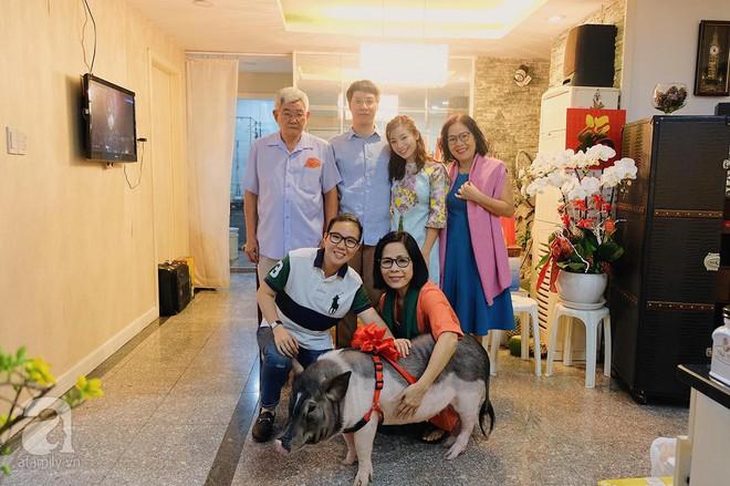Gia đình ở Sài Gòn nuôi chú heo nặng gần 60kg, thực đơn riêng có tôm càng, xúc xích Đức, tổ yến - Ảnh 1.