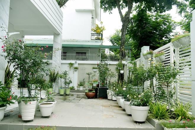 Lý do Trịnh Kim Chi, Hiền Mai thăm nhà vườn triệu đô của Quyền Linh - Ảnh 6.