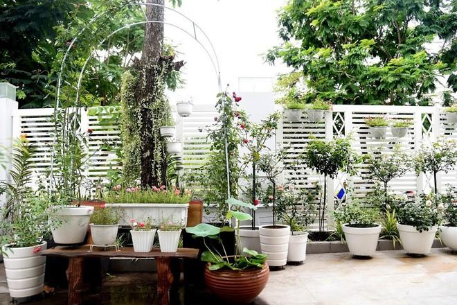 Lý do Trịnh Kim Chi, Hiền Mai thăm nhà vườn triệu đô của Quyền Linh - Ảnh 7.
