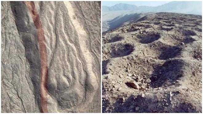 Trái Đất màu tím, cát biết hát và 11 sự thật khác lạ về thế giới khiến ai cũng ngạc nhiên - Ảnh 5.