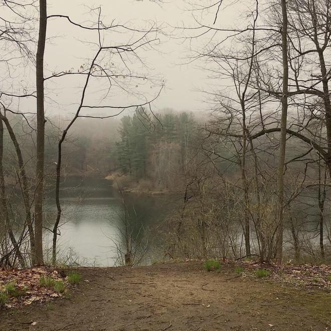Hình dáng người phụ nữ trên thân cây và câu chuyện về người vợ bị phản bội, người mẹ dành cả đời đi tìm con gái ám ảnh công viên nước Mỹ - Ảnh 3.