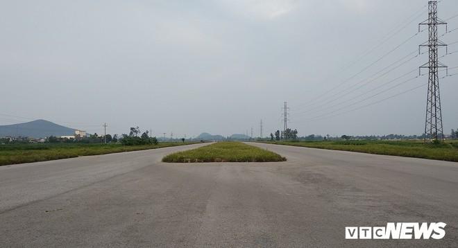 Cận cảnh dự án đường nghìn tỷ đồng dang dở, bỏ hoang, trở thành nơi chăn bò ở Nghệ An - Ảnh 3.