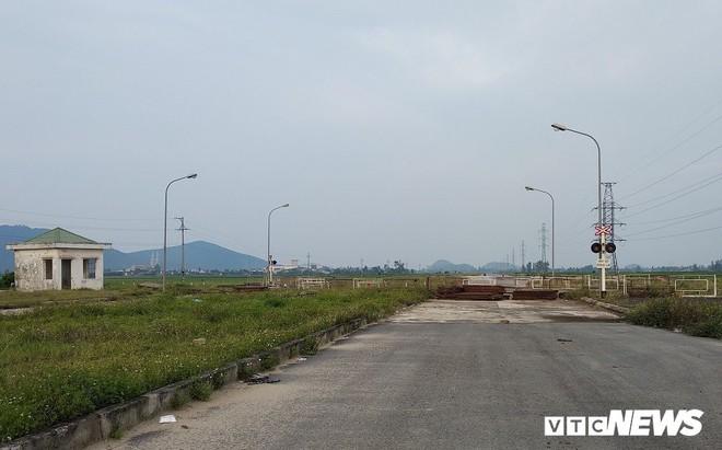 Cận cảnh dự án đường nghìn tỷ đồng dang dở, bỏ hoang, trở thành nơi chăn bò ở Nghệ An - Ảnh 5.