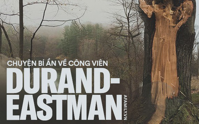 Hình dáng người phụ nữ trên thân cây và câu chuyện về người vợ bị phản bội, người mẹ dành cả đời đi tìm con gái ám ảnh công viên nước Mỹ