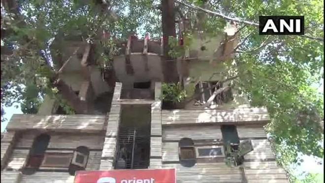 Xây nhà lại phải vướng cây cổ thụ trăm tuổi, gia đình không phá đi mà quyết định làm một việc khiến ai đi qua cũng phải ngước nhìn - Ảnh 2.