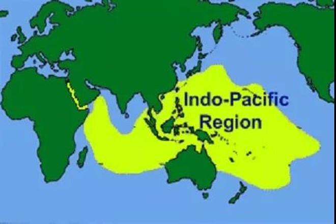 Học giả Malaysia: Sóng ngầm mạnh mẽ, các nước ASEAN không cam chịu về Biển Đông - Ảnh 2.