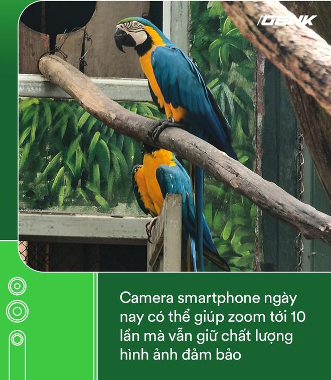 Hóa ra tác dụng thú vị nhất của camera zoom 10x là đi chụp động vật - Ảnh 2.