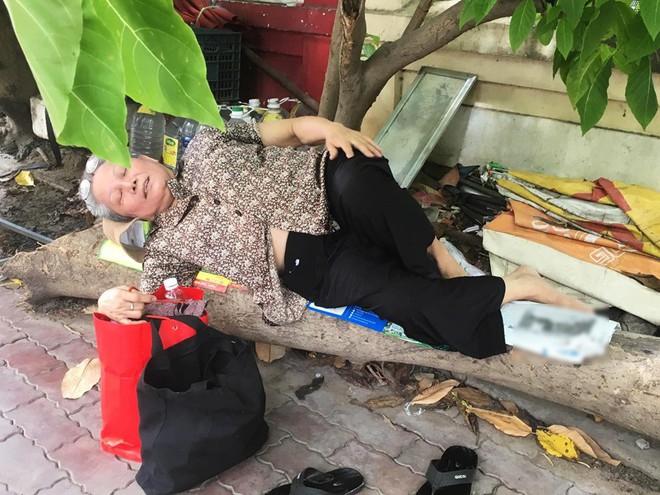 Cụ bà Sài Gòn ngả lưng trên thân cây khô chờ cháu ngoại đi thi - Ảnh 1.