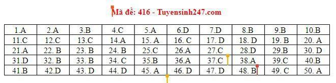 Cập nhật gợi ý đáp án môn tiếng Anh THPT Quốc gia 2019 tất cả 24 mã đề - Ảnh 3.
