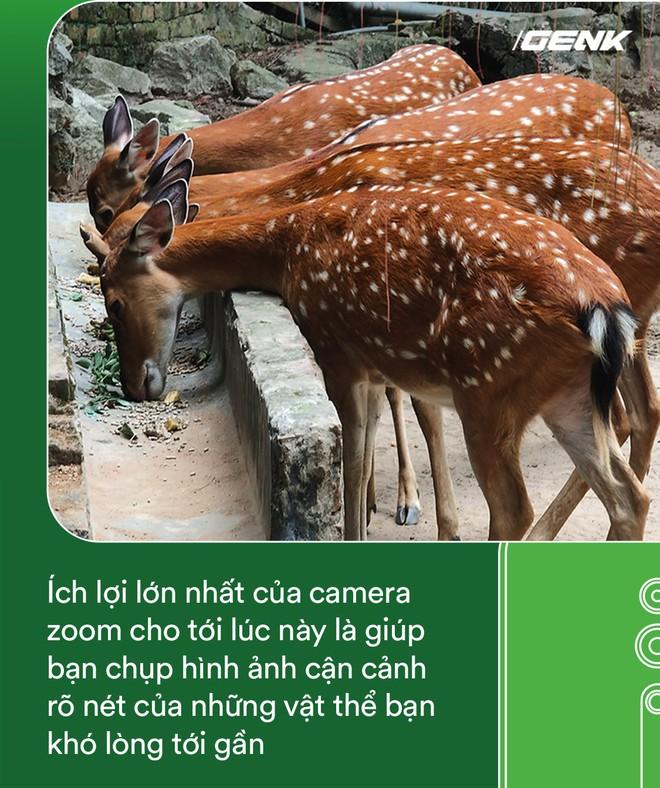 Hóa ra tác dụng thú vị nhất của camera zoom 10x là đi chụp động vật - Ảnh 5.