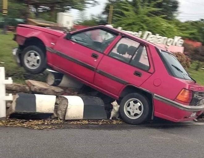 Tại hiện trường một vụ tai nạn giao thông, thứ nhỏ xíu dưới bánh xe khiến tất cả phải chú ý - Ảnh 2.