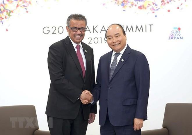 Hình ảnh Thủ tướng tiếp xúc song phương với các nhà lãnh đạo thế giới - Ảnh 8.