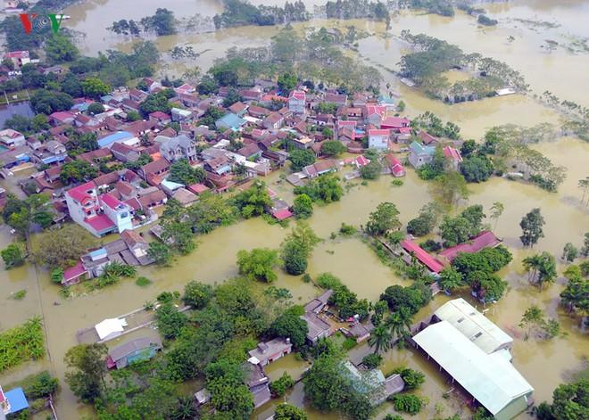 Gấp rút nâng cấp đê tả Bùi tại Hà Nội khi mùa mưa bão đang về - Ảnh 1.