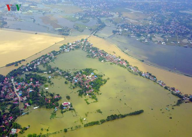 Gấp rút nâng cấp đê tả Bùi tại Hà Nội khi mùa mưa bão đang về - Ảnh 2.