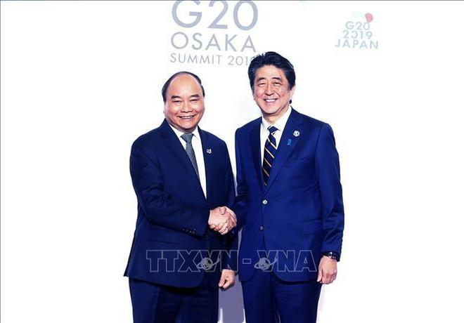 G20 và vị thế Việt Nam - Ảnh 2.