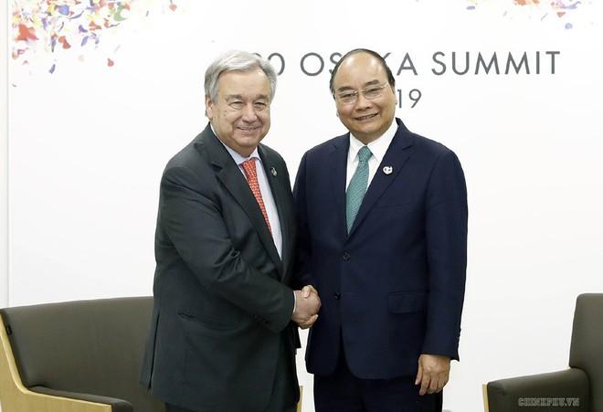 G20 và vị thế Việt Nam - Ảnh 6.