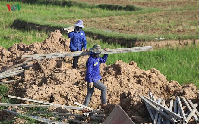 Gấp rút nâng cấp đê tả Bùi tại Hà Nội khi mùa mưa bão đang về - Ảnh 7.