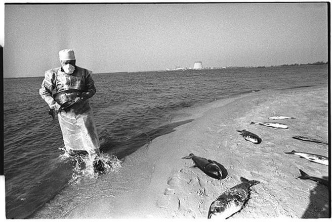 Những bức ảnh hơn vạn lời nói cho thấy mức độ khủng khiếp của thảm họa hạt nhân Chernobyl: Vùng đất chết chóc bao giờ mới hồi sinh? - Ảnh 5.