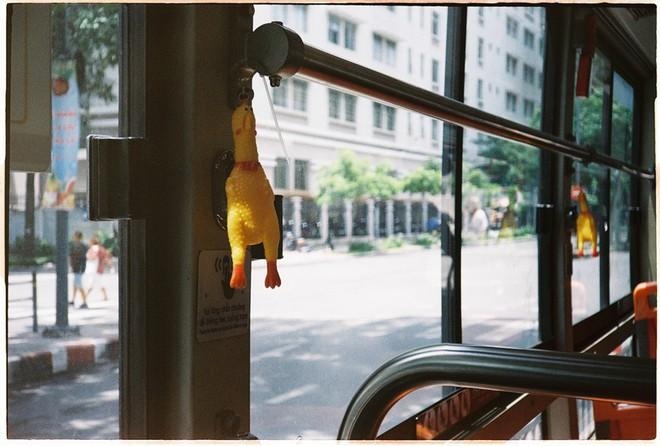 Đàn gà lủng lẳng trên xe buýt và câu chuyện đằng sau khiến dân mạng bật cười - Ảnh 1.