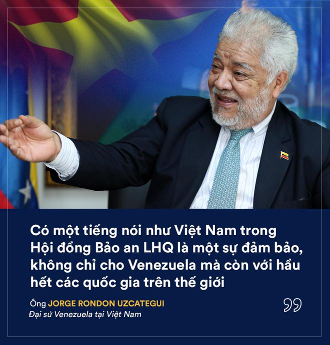 Việt Nam trúng cử HĐBA LHQ với số phiếu kỷ lục: Kỳ vọng của các nhà ngoại giao quốc tế - Ảnh 3.