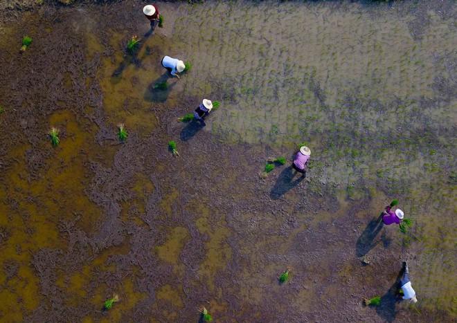 7 ngày qua ảnh: Người dân Nga tắm nắng cạnh đài phun nước ở Moscow khi nhiệt độ tăng cao - Ảnh 8.