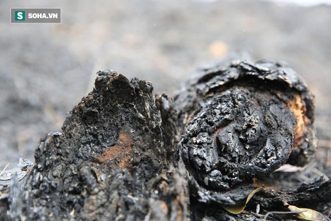 50ha rừng phòng hộ hoang tàn sau nhiều ngày cháy, người dân hoang mang trực chiến - Ảnh 6.