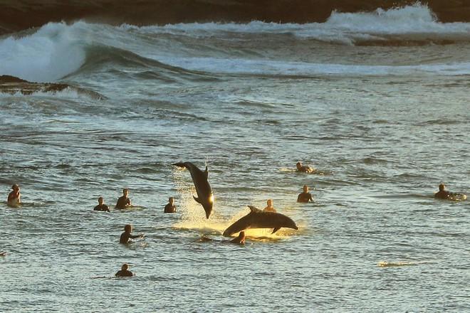 24h qua ảnh: Tượng cá voi khổng lồ làm từ rác dưới đại dương - Ảnh 11.