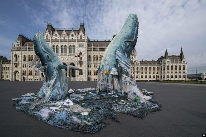 24h qua ảnh: Tượng cá voi khổng lồ làm từ rác dưới đại dương - Ảnh 3.