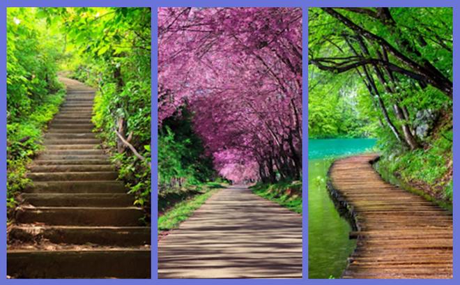 Chọn con đường bạn muốn đi nhất để khám phá phong cách sống của bản thân