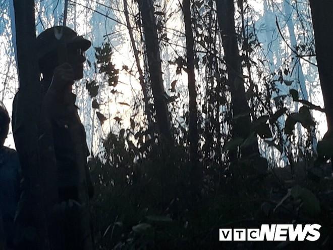 Cháy rừng nghi ngút, xuất hiện nhiều tiếng nổ vang trời ở Bình Định - Ảnh 2.