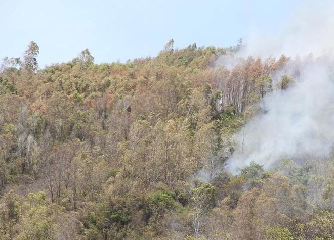 Cháy rừng nghi ngút, xuất hiện nhiều tiếng nổ vang trời ở Bình Định - Ảnh 4.