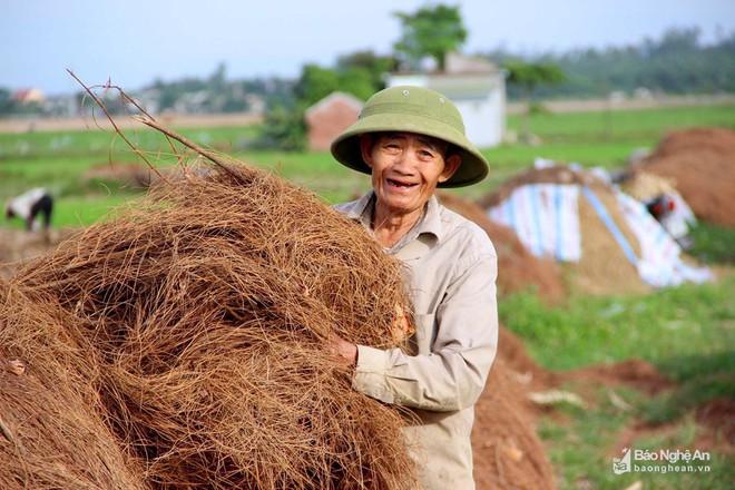 Nghệ An: Về nơi người dân đổ xô vào rừng nhặt thứ lá quý như vàng - Ảnh 6.