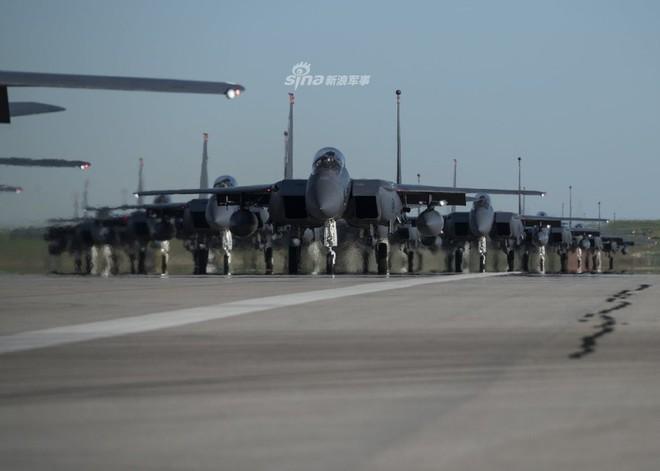 Tiêm kích F-15 Mỹ - Singapore diễu binh Voi đi bộ hoành tráng - Ảnh 2.