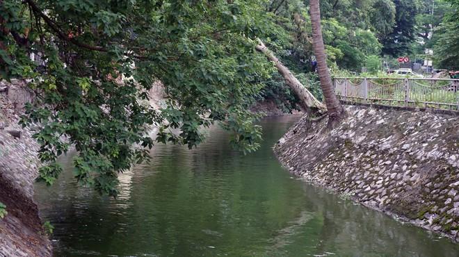 Cận cảnh nước sông Tô Lịch sau 2 ngày hồ Tây mở cửa xả nước - Ảnh 5.