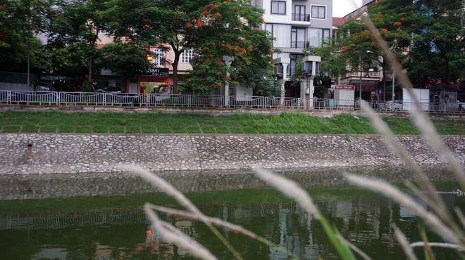 Cận cảnh nước sông Tô Lịch sau 2 ngày hồ Tây mở cửa xả nước - Ảnh 6.