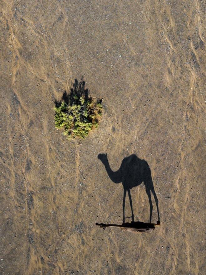 Những tác phẩm nghệ thuật đẹp không tưởng được chụp bằng drone - Ảnh 6.