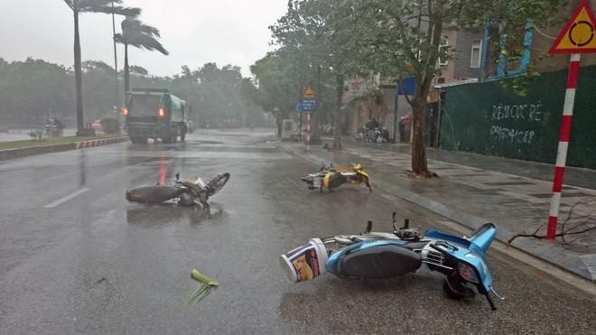 Trời Hà Nội đổ cơn giông cuối chiều, cây xanh bật gốc, xe máy đổ la liệt - Ảnh 1.