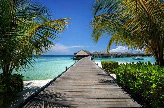 Ăn Hảo Hảo dạo đảo Maldives cùng Hoài Linh và Tóc Tiên ngay hôm nay - Ảnh 1.