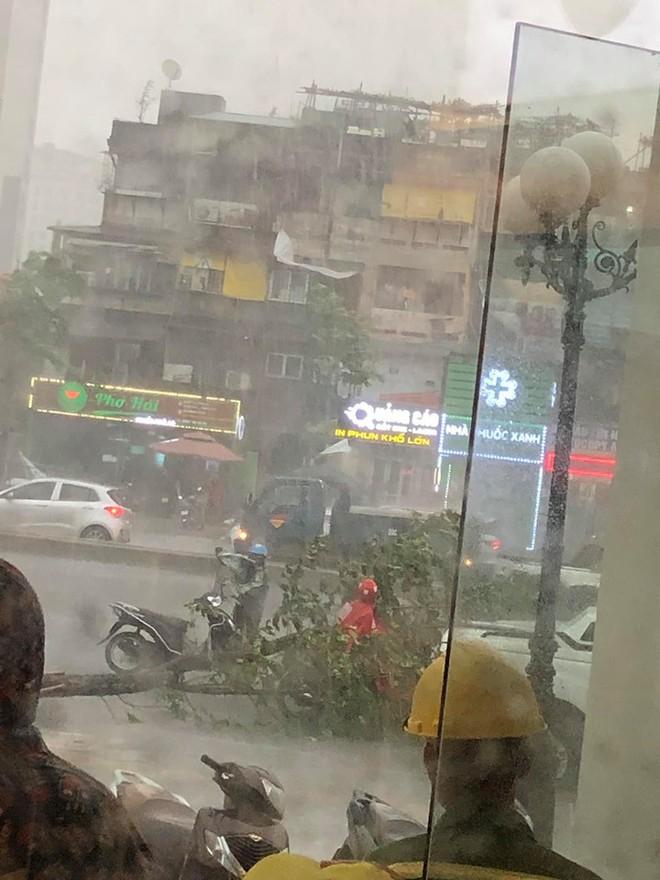 Trời Hà Nội đổ cơn giông cuối chiều, cây xanh bật gốc, xe máy đổ la liệt - Ảnh 2.