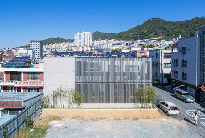 Ngôi nhà khu rừng thép ở Hàn Quốc đẹp không kém gì trong phim, mềm mại bất ngờ ai nhìn cũng muốn được ở - Ảnh 1.