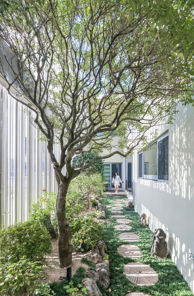 Ngôi nhà khu rừng thép ở Hàn Quốc đẹp không kém gì trong phim, mềm mại bất ngờ ai nhìn cũng muốn được ở - Ảnh 7.