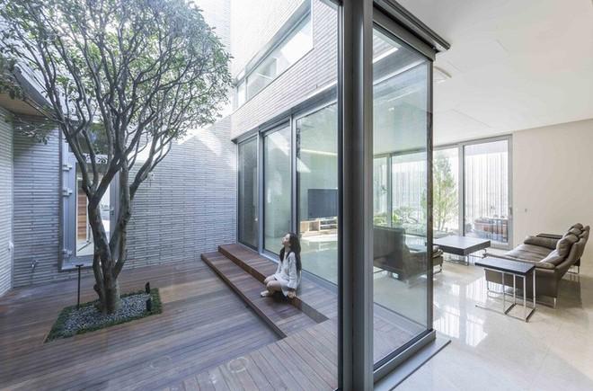 Ngôi nhà khu rừng thép ở Hàn Quốc đẹp không kém gì trong phim, mềm mại bất ngờ ai nhìn cũng muốn được ở - Ảnh 10.