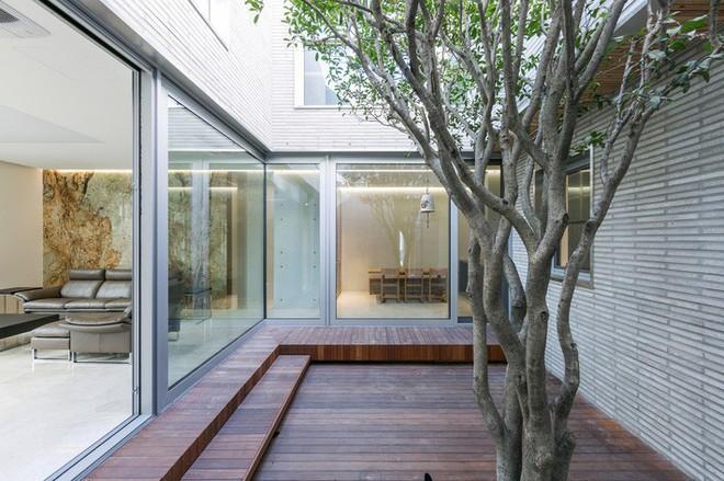 Ngôi nhà khu rừng thép ở Hàn Quốc đẹp không kém gì trong phim, mềm mại bất ngờ ai nhìn cũng muốn được ở - Ảnh 11.